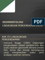 Lingkungan pengendapan deltaa.pptx