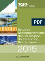 Estudos Socioeconômicos 2015.pdf