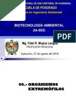 Genética Molecular de las Arqueas.pdf