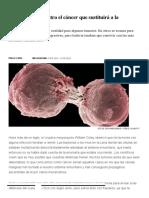 Inmunoterapia_ El Tratamiento Contra El Cáncer Que Sustituirá a La Quimioterapia _ Ciencia _ EL PAÍS