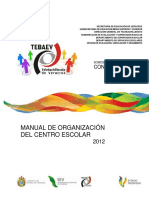 manual_organizacion tebaev.pdf