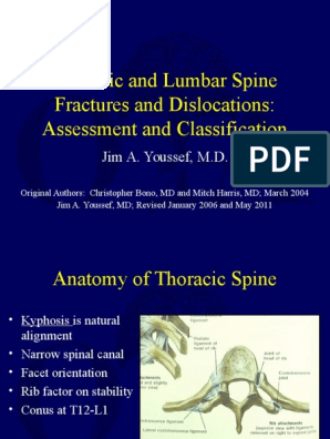 S4 Classification Thoracolumbar Spine Fractures Spinal