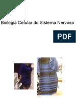 Biocel 2016