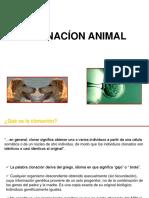 Biotecno Animal Gus 2 PDF