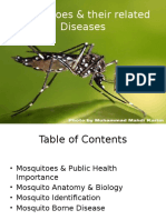 Mosquitoes & their related Diseases Day 1.pptx
