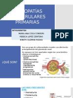 Nefropatías Glomerulares Primarias - Copia