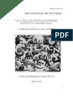 Programa y Normativa 2016