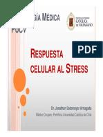 3. Respuesta celular al stress pdf.pdf