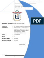 Informe Topo II New