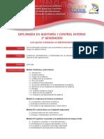 diplomado_auditoria_control_interno.pdf