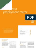 your_prepayment_meter.pdf