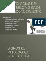 PATOLOGIAS DEL CEREBELO TERMINADO.pptx