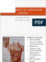 Surgical Aspect of Large Bowel. Pptx