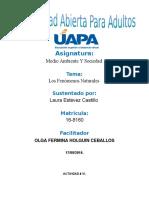 Unidad IV Medio Ambiente y Sociedad Laura Esteves Castillos