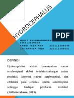 HYDROCEPHALUS (peerteaching)