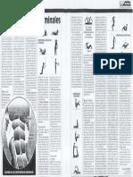 A tono con los abdominales.pdf