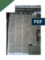 Rabanitos Gigantes ovnis.pdf