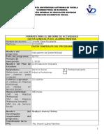 2doReporte-formatoInformeActividadesSSPP