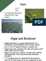 Algae Based Biofuels Lecture
