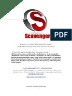 Scavenger List 2013.pdf