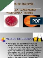 Medios de Cultivo Magda -3
