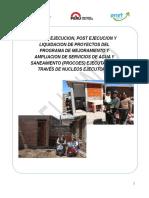 GUIA DE EJECUCION NE PROCOES.docx