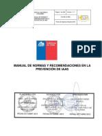 MANUAL IAAS.pdf