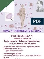 Documents%5Cgenetica_gen%5CTema 4 Herencia Del Sexo201337-197