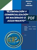 Proyectodeaguaymanto