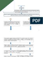 1.1 pura y aplicada mapa conceptual