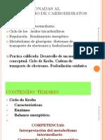 SEMANA-7-Krebs-2016 (1).pdf