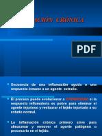 8.-Inflamacion Cronica
