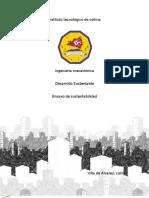 Desarrollo Sustentable - Ensayo de Sustentabilidad