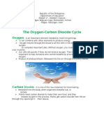 Handouts of Oxygen-Carbon Dioxide Cycle