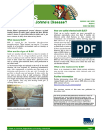 BJD What is Bovine Johnes Disease