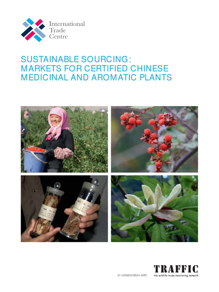 5 Markets For Sustainably Certified Chinese Plan Low Res