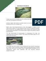 Crocodiles in the Arctic