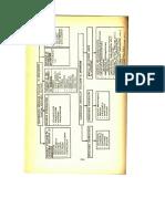 11.Clasificarea_enzimelor_utilizate_ca_medicamente.pdf