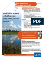 Facts About Naegleria fowleri and Primary Amebic Meningoencephalitis