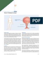 Tumoret e Fshikez Urinare (1)