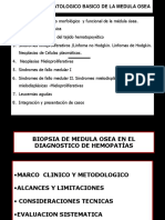 1 Evaluacion Histologica Sistematica de La Medula Osea