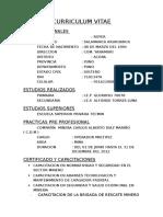 Curriculum Vite 01