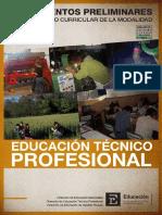 Lineamientos Preliminares ETP Res 609 09