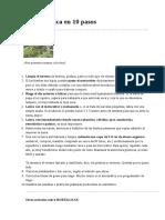 Huerta orgánica en 10 pasos.odt