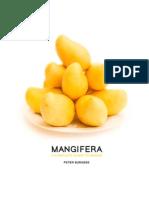 Mangifera- A Complete Guide to Mango