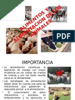 ALIMENTOS Y ALIMENTACION DE LOS ANIMALES (2).pptx