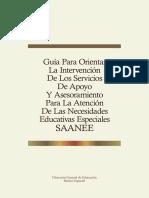 7 Guia Para Orientar La Intervencion de Los Saanee