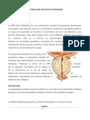 patología prostática pdf y