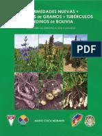 Enfermedades nuevas y emergentes de granos y tubérculos andinos de Bolivia – Guía para su identificación y manejo