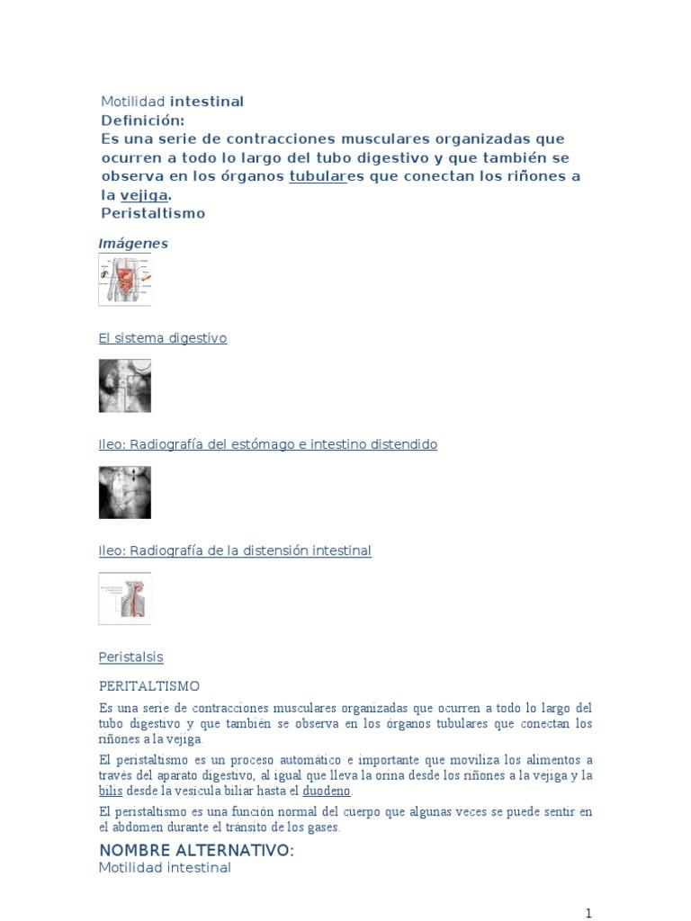 Anatomia grupo ·7